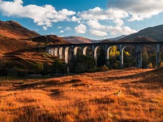 bridge-768588_1920